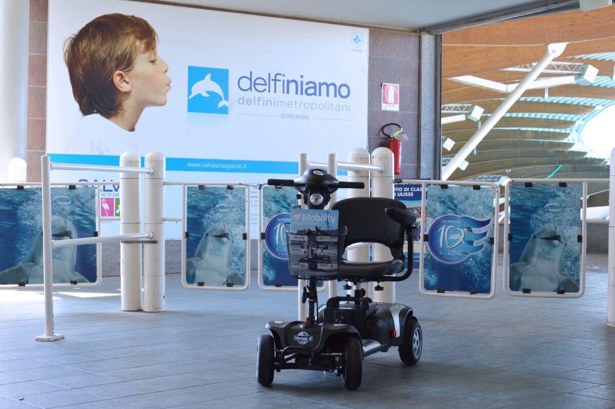 delfinario_low