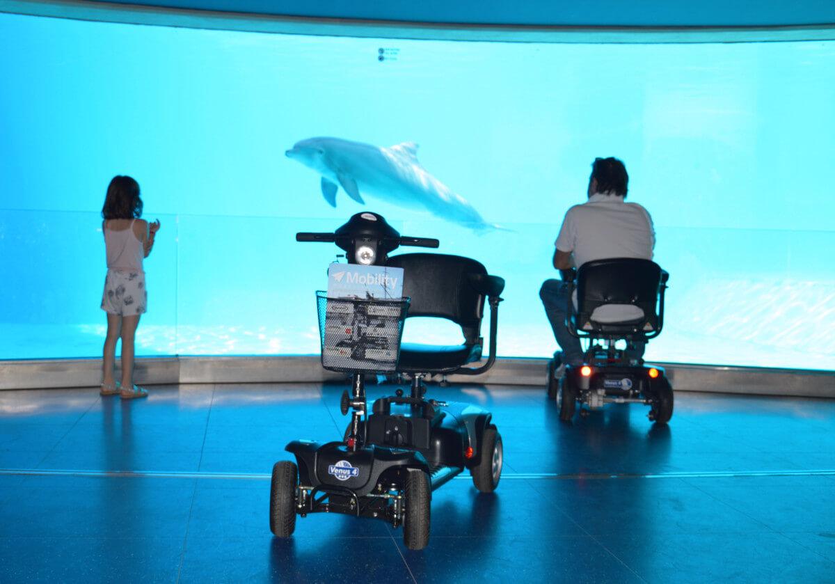 scooter con bambina e delfino_low